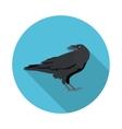 flat icon Raven vector image