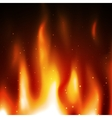 Burn flame fire background vector image