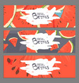 fresh berries banners vector image vector image
