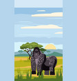 gorillas cute cartoon style in background savannah vector image vector image
