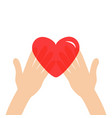 hands arms holding red shining heart shape sign vector image vector image