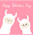 happy valentines day llama alpaca set face neck vector image