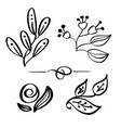 set hand drawn wild flowers branch drawing vector image