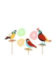 Song birds with speech bubbles vector image vector image