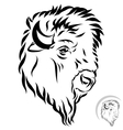 stylized bison head vector image vector image