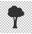 Tree sign Dark gray icon on vector image vector image