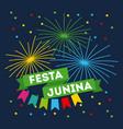festivity june vector image