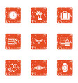 money excursion icons set grunge style vector image vector image
