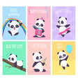 panda cards cute little bear animals cover vector image vector image