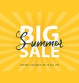 big summer sale sign with retro pop art halftone vector image vector image