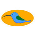 Blue hummingbird on white background
