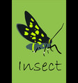 poster insect vector image vector image