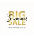 big summer sale gold sign in white golden glitter vector image