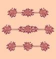 daisy flowers coral linear patterns vector image vector image