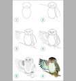 educational page for kids how to draw step vector image