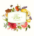 organic cosmetics banner vector image vector image