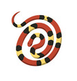 rolled in spiral circle coral snake icon vector image vector image