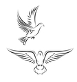stylized dove vector image vector image