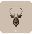 Animal Portrait With Flat Design Deer vector image