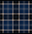 black tartan plaid seamless pattern vector image vector image