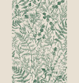 botanical seamless hand-drawn pattern vector image vector image