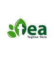 green and natural tea logo vector image