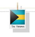 photo bahamas flag vector image