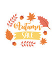 autumn sale shopping sale or promo poster vector image