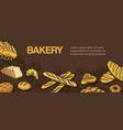 bakery and bread shop sketch vector image vector image