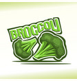 broccoli vector image