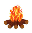 campfire with firewood and flame torch in cartoon vector image