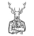 deer businessman sketch engraving vector image vector image