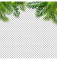 frame with green palm leaf isolated transparent vector image vector image