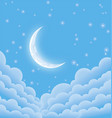 soft starry moonlit night vector image vector image
