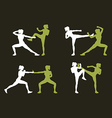 Young woman fighting body combat vector image vector image
