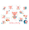 2019 year of the pig set vector image vector image