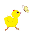 Abstract image of chick with butterfly vector image vector image