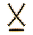 Bandolier with bullets Ammunition belt Tape