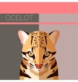 Flat postcard with Ocelot vector image