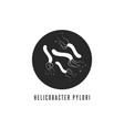 helicobacter pylori logo gastric bacterium vector image vector image