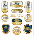 luxury retro badge and labels collection 2 vector image vector image
