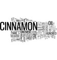 what s so special about cinnamon text word cloud vector image vector image