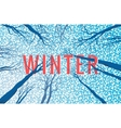 Winter landscape with text vector image