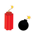 Bomb and dynamite vector image vector image