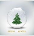 christmas snow globe with christmas tree on vector image