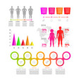 gradient flat infographic element people diagrams vector image vector image