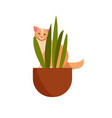 guilty cat flat color character cute vector image vector image
