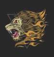 head lion howled in anger and he had hair vector image