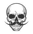 human skull sketch engraving vector image