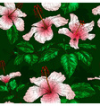 Seamless Floral Pattern with Hibiscus Flowers vector image vector image